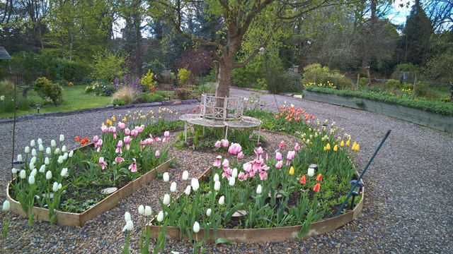 Keyhole Garden Design keyhole garden design ideas Functional Keyhole Garden Design With Tulips And Wildflower Bordered By Gravel Paths